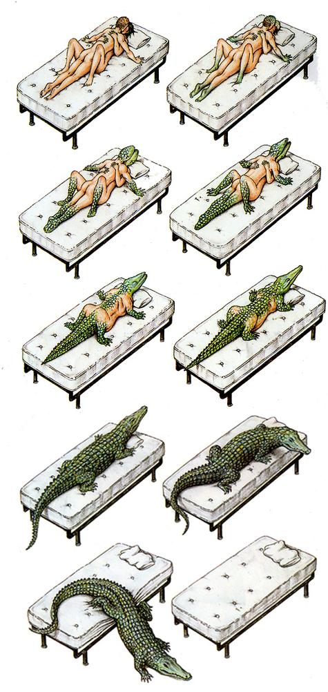 Amour_crocodile