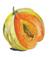Aquarelle_melon2_2